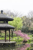 Pavilion and peach blossom Royalty Free Stock Photo