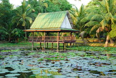Pavilion in pool. This pavilion is built in lotus pool.this place is in east of thailand Royalty Free Stock Photo