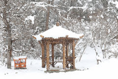 Pavilion snow Stock Image