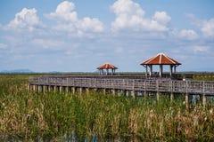 Pavilion and wood bridge Stock Photos