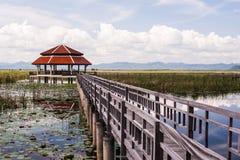 Pavilion and wood bridge in swamp Royalty Free Stock Image