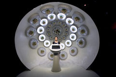 Paviljoen van het Huis van Expo 2010 het Shanghai-Ruimte Stock Foto