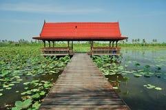 Paviljong i en lotusblommalantgård Arkivfoto