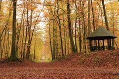 Paviljong i skogen Royaltyfria Foton