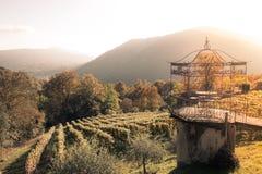Paviljong i vineardsna med tabellen och stolar under solnedgång Royaltyfri Bild