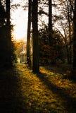 Paviljongen parkerar in på solnedgången Royaltyfri Bild