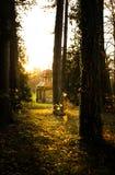 Paviljongen parkerar in på solnedgången Arkivfoton