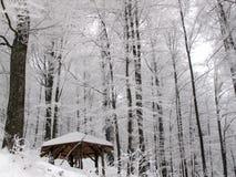 Pavillion在一个多雪的森林里 库存图片