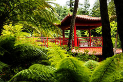 Pavillion in a Beautiful Garden at Monte above Funchal Madeira. This wonderful garden is at the top of the cablecar from the seafront in Funchal. It is filled Royalty Free Stock Photo