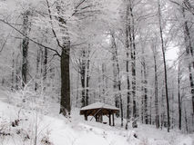 Pavillion in a snowy forest Stock Photography