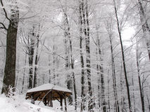 Pavillion in a snowy forest Stock Image
