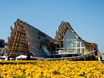 Pavillion van China in Expo 2015 Stock Fotografie