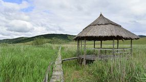 Pavillion and wooden bridge through the reed natural reserve from Sic. Royalty Free Stock Photography