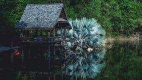 Pavillion y palmera sobre el lago Foto de archivo libre de regalías
