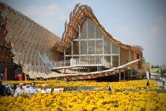 Pavillon de la Chine à l'expo 2015 en Milan Italy Photos libres de droits