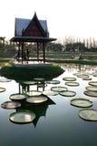 Pavillon thaï dans l'étang de lotus Image libre de droits