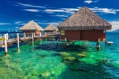 Pavillons d'Overwater avec la meilleure plage pour naviguer au schnorchel, Tahiti, poly image libre de droits