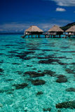 Pavillons d'Overwater sur Moorea image stock