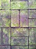 Pavimentação do tijolo Imagem de Stock