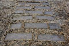 Pavimentação do tijolo Fotografia de Stock
