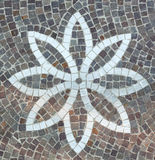 Pavimentación con las piedras del adoquín Fotos de archivo