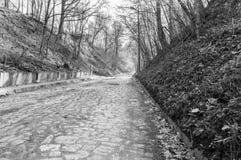 Pavimentado con el camino de los adoquines en valle en blanco y negro en Kazimierz Dolny Fotos de archivo libres de regalías