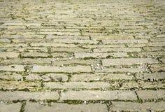 Pavimentadoras de la ciudad con la hierba Imagen de archivo libre de regalías
