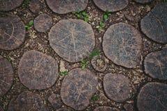 Pavimentando il patio della quercia ha visto i tagli Immagini Stock Libere da Diritti