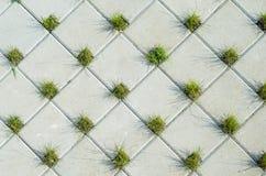 Pavimentando a textura concreta das pedras Imagem de Stock Royalty Free