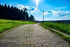a Pavimentar-pedra corre através do prado com o sol no fundo imagem de stock royalty free