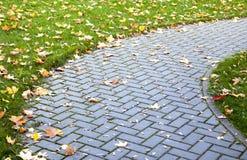 Pavimentazione in autunno fotografia stock