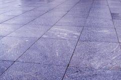 Pavimentazione bagnata delle mattonelle nel parco al giorno piovoso fondo, decorazione immagini stock libere da diritti