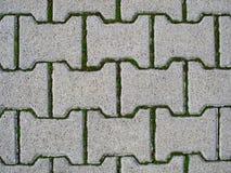 Pavimentazione in calcestruzzo immagini stock