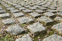 Pavimentazione del blocco Fotografia Stock