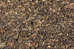 Pavimentazione del deserto Fotografia Stock Libera da Diritti