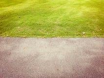 Pavimentazione dell'asfalto con erba verde Immagini Stock Libere da Diritti