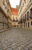 Pavimentazione della via a Vienna Fotografia Stock Libera da Diritti