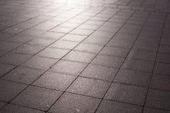 Pavimentazione delle mattonelle con i sunglares ad alba natura, ambiente immagini stock libere da diritti