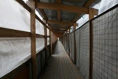 Pavimentazione di legno protetta Fotografia Stock Libera da Diritti