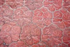 Pavimentazione di pietra rossa sulla via Immagini Stock Libere da Diritti