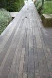 Pavimentazione e paesaggi di legno Fotografie Stock