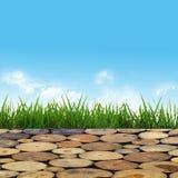Pavimentazione fatta dei ceppi di legno attraverso l'erba verde sotto Fotografie Stock Libere da Diritti