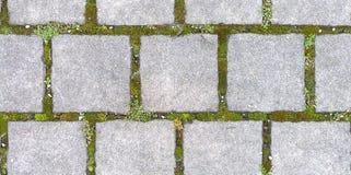 Pavimentazione quadrata con l'erba, struttura senza cuciture di HD Fotografia Stock