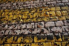 Pavimentazione scura Immagini Stock Libere da Diritti