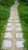 Pavimenti il calcestruzzo su erba fotografie stock