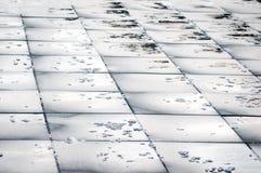 Pavimento abstracto de la piedra de la hoja Imagen de archivo