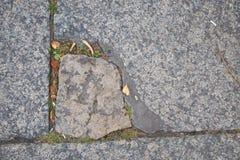 Pavimento Cobbled no centro Petersburgo Fotografia de Stock Royalty Free