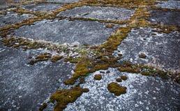Pavimento concreto gris viejo demasiado grande para su edad con el musgo Fotografía de archivo libre de regalías