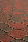 Pavimento coperto di tegoli Immagini Stock