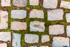 Pavimento de adoquín Imagen de archivo